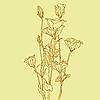 Vektor Cliparts: Blume Hintergrund