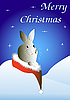 Weihnachtskarte mit einem Hase