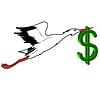 Weißstorch im Flug mit Dollar, der in seinem Schnabel