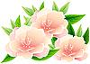 Vektor Cliparts: abstrakter rosa Blüten.