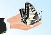Schmetterling in der Hand