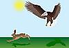 Adler und der Hase