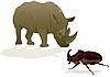 Rhino und Nashornkäfer