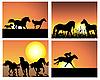 Pferd auf Sonnenuntergang Hintergründen