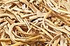 减少干燥根 | 免版税照片