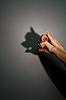 ID 3128220 | Silhouette - Schatten eines Schweins | Foto mit hoher Auflösung | CLIPARTO