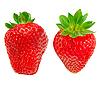 Erdbeere | Stock Foto