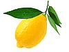 Zitrone | Stock Foto