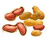 Erdnüsse | Stock Foto