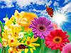 ID 3120977 | 非洲菊花朵和蝴蝶 | 高分辨率照片 | CLIPARTO