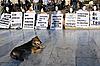 ID 3107460 | Protestierende in Athen in weißen Masken | Foto mit hoher Auflösung | CLIPARTO