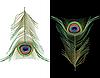 Pawie pióra | Stock Vector Graphics
