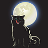 nachtaktive schwarze Katze
