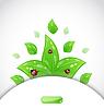 Broschüre-Vorlage mit grünen Blättern und Marienkäfern