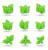 Reihe von grünen Öko Blätter