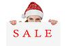 ID 3279859 | Boże Narodzenie Santa kobieta z arkusza PAPR - sprzedaż | Foto stockowe wysokiej rozdzielczości | KLIPARTO