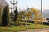 ID 3089409 | Kleine Birke im Stadtpark | Foto mit hoher Auflösung | CLIPARTO