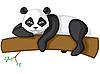 Panda aud einem Zweig