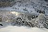 Schneelandschaft im Winter | Stock Foto
