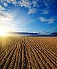Czarny zaoranym polu i zachód słońca | Stock Foto