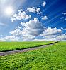 Wiejskiej drogi w zielonym polu | Stock Foto