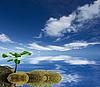 추상 개념 생태 배경 | Stock Foto