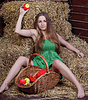 Beautiful girl on hay with basket of apples | Stock Foto