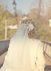 Bridal Veil Brides on head of outgoing | Stock Foto