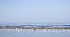 ID 3120522 | Rano na Zatoce Ryskiej | Foto stockowe wysokiej rozdzielczości | KLIPARTO
