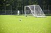 ID 3124228 | Fußball. Ein Ball auf einem Gras und Fußball-Tor | Foto mit hoher Auflösung | CLIPARTO