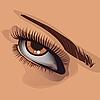 Frauen-Auge und Augenbraue