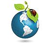 瓢虫和全球 | 向量插图