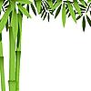 Vektor Cliparts: Bambus