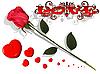 Vektor Cliparts: Liebe - Rose und Herze