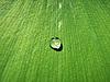ID 3159351 | Kropli wody na zielony liść | Foto stockowe wysokiej rozdzielczości | KLIPARTO