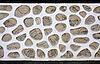 ID 3097027 | Stary mur z kamienia i betonu | Foto stockowe wysokiej rozdzielczości | KLIPARTO