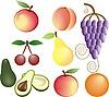 Frutas | Ilustración vectorial