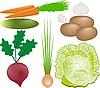 Verduras establecer | Ilustración vectorial