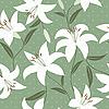 Bez szwu deseń z kwiatów lilii | Stock Vector Graphics