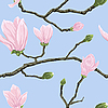 Jednolite wzór z kwiatami magnolii | Stock Vector Graphics