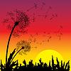 Sonnenuntergang | Stock Vektrografik
