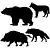 Silhouetten der Wildschweine, Bären, Wölfe, Hyänen