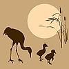 Векторный клипарт: иллюстрация кран с птенцом на су