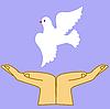 Darstellung der Taube in der Hand