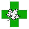 кленовый лист на зеленом кресте