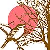 Silhouette des Vogels auf dem Zweig