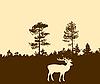 Silhouette der Hirsche