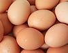 ID 3255840 | Grupa brązowych jaj kurzych | Foto stockowe wysokiej rozdzielczości | KLIPARTO