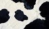 ID 3239852 | 真正的黑色和白色牛皮 | 高分辨率照片 | CLIPARTO