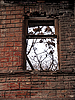 Window of abandoned house | Stock Foto